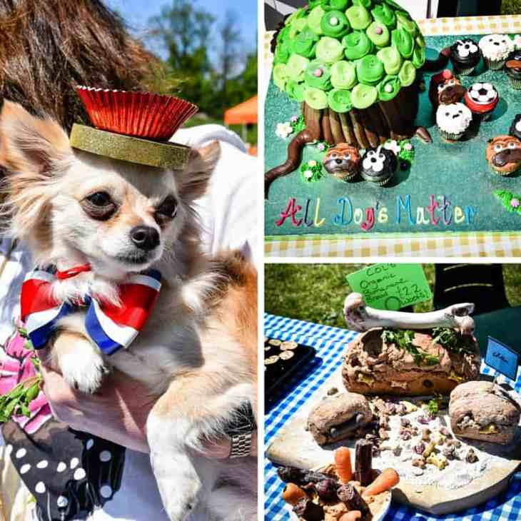 All Dogs Matter Great Hampstead Bark Off - Best PupCake