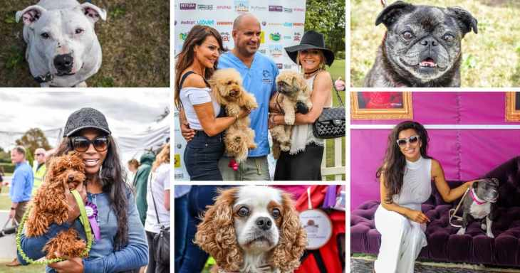 Pup Aid 2018