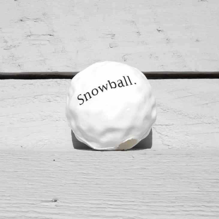 gift-ideas-for-dogs-orbee-snowball