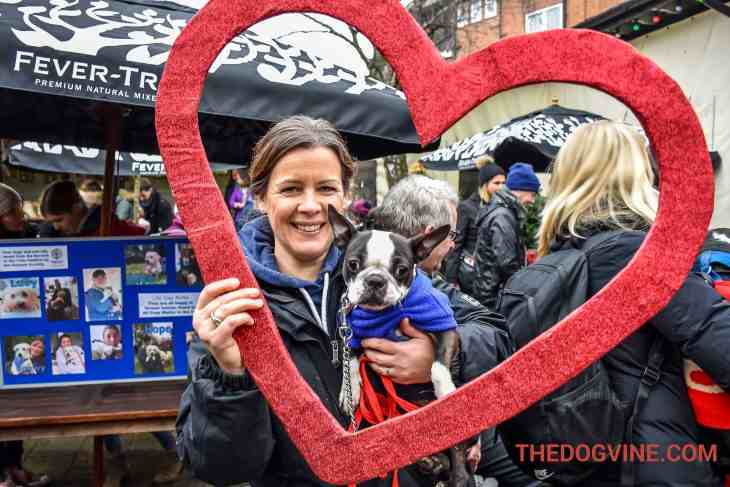 All Dogs Matter Valentines Walk-13