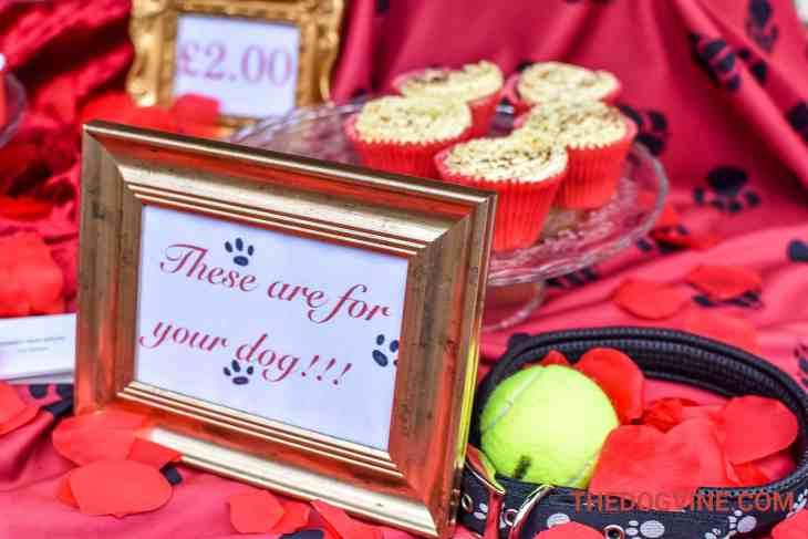 All Dogs Matter Valentines Walk-32