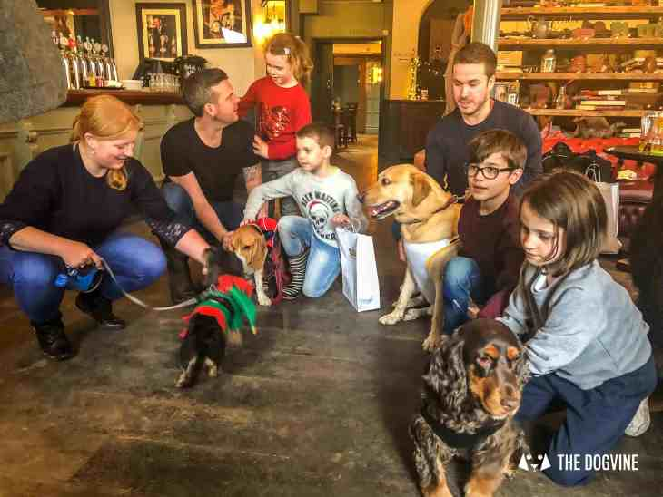 Canine Christmas Crackers at The Windmill Clapham 48
