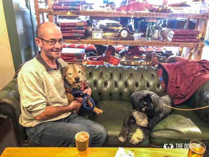 Canine Christmas Crackers at The Windmill Clapham 49