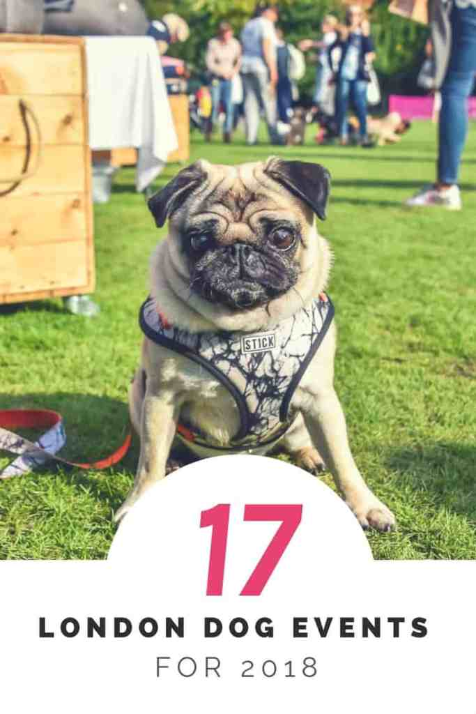 17 Things To Do In London With A Dog _ London Dog Events 2018