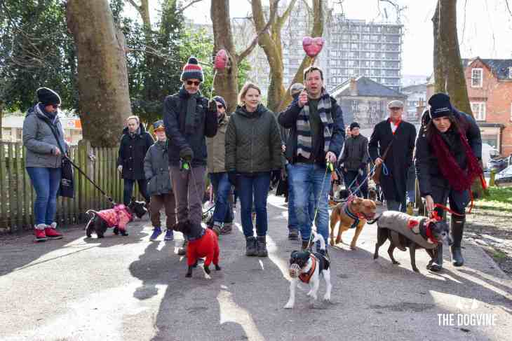London Dogs Celebrate Valentines Day On The All Dogs Matter Valentines Walk - London Dog Event 40