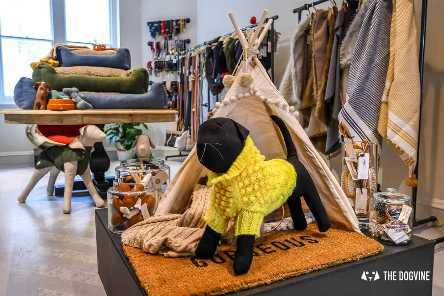 New Pet Lifestyle Brand Love My Human + Chelsea In Bloom 13
