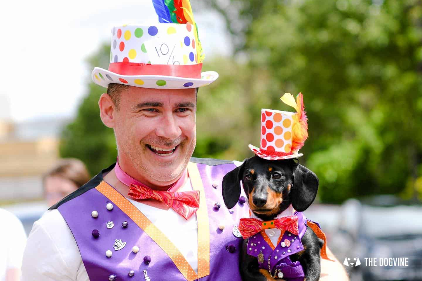 London's Best Dressed Dachshunds At Sausage Social London The Mad Hatters Tea Party 131