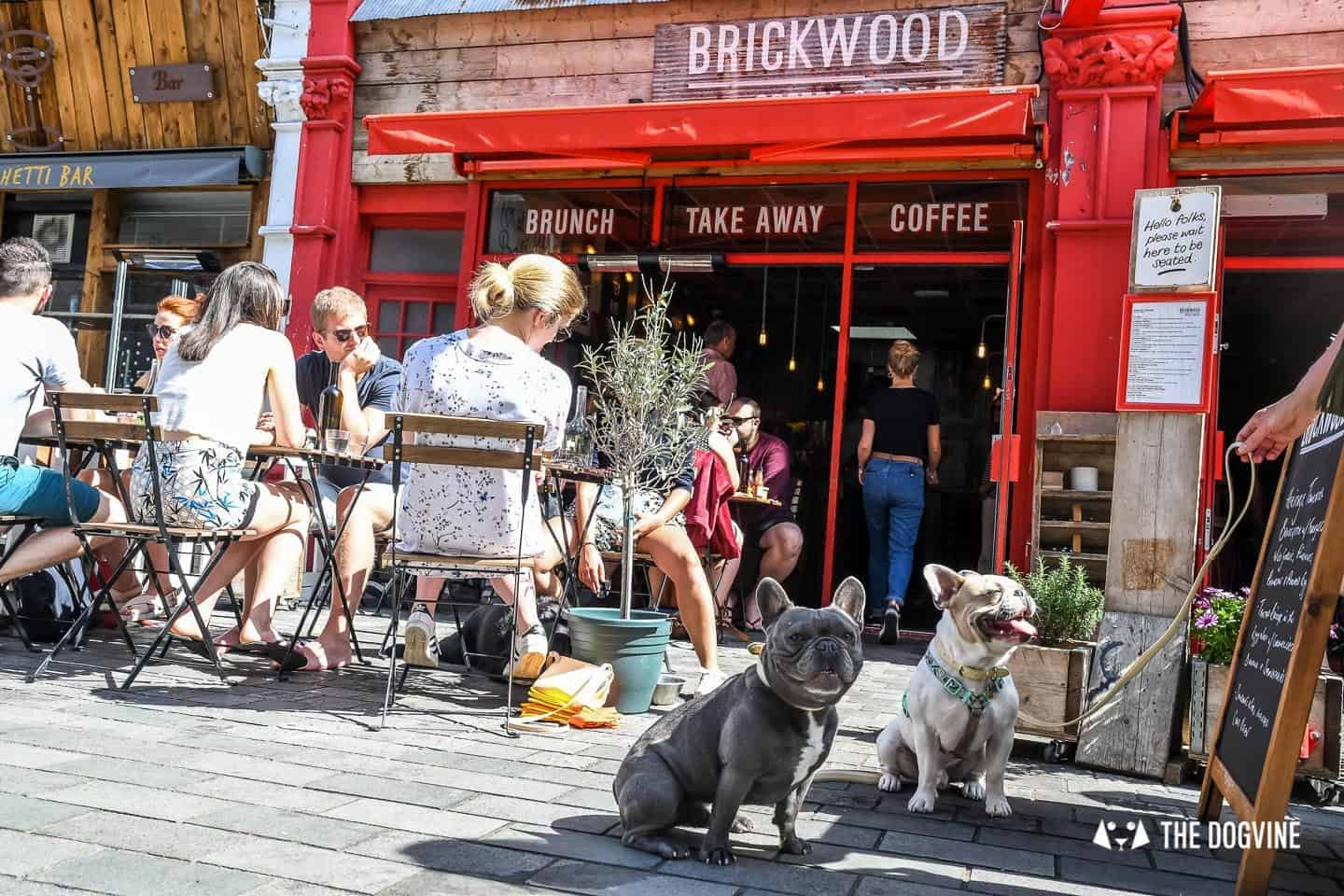 My Dog Friendly London By Herbie and Dave The Frenchies 1