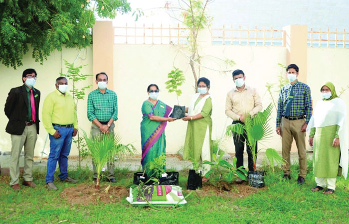 MES Indian School Campus Care Force plant saplings on campus