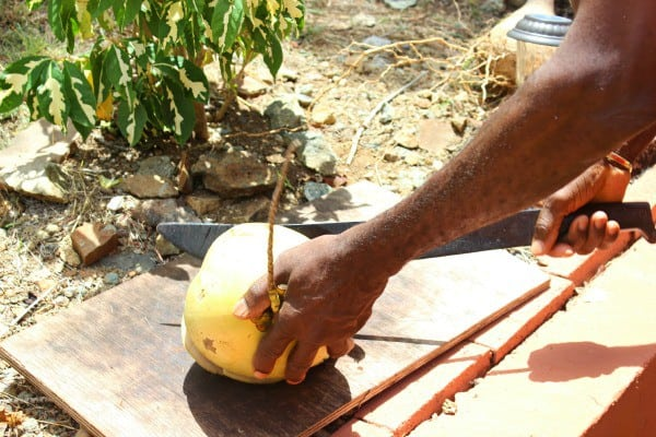 Benefits of coconut water and why you should buy some