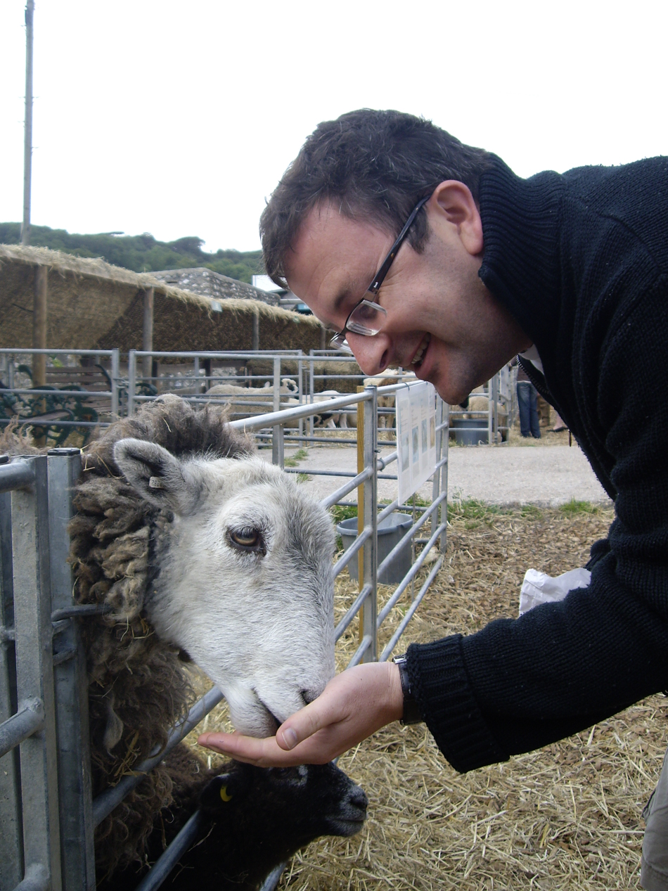 SHEEPFRIEND, Sussex 2009
