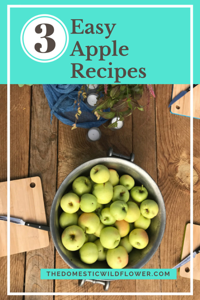 3 Easy Apple Recipes that anyone can make!