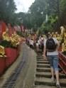road to buddhas