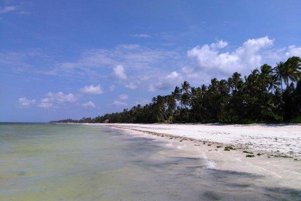 Bwejuu Strand Sansibar