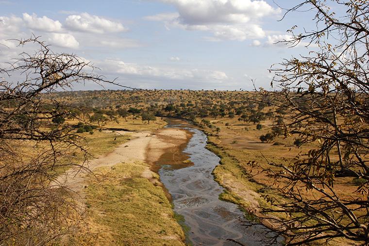 Fluss und Lanschaft im Tarangire Nationalpark von oben