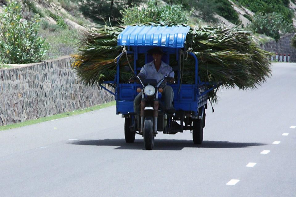 Bauer in Vietnam