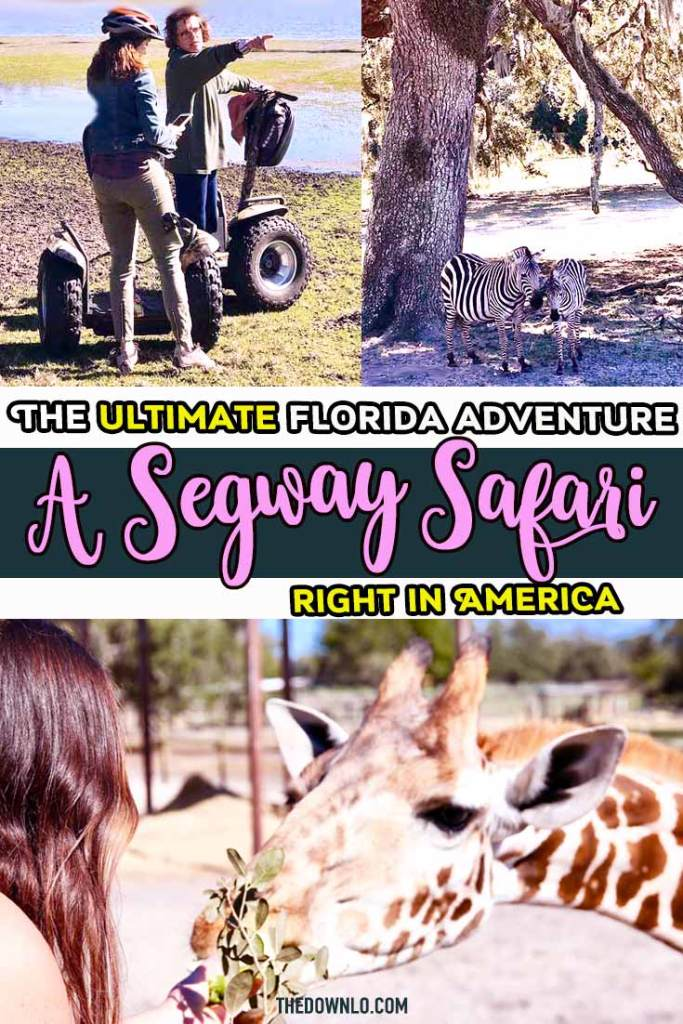 A safari in America? Yes, it's true. Giraffe Ranch in Pasco, Florida (north of Tampa) is an eco-friendly, sustainable, hands-on wild animal encounter. Feed animals like giraffes and practice your landscape photography while zipping around on a Segway. An incredible place to travel with kids. #florida #fl #girafferanch #safari #bucketlist
