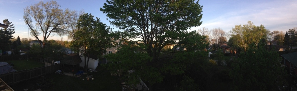 Panoramic of our view at sunset