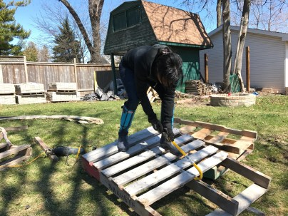 Taking apart pallets for a reclaimed wood feature wall   The Dreamhouse Project