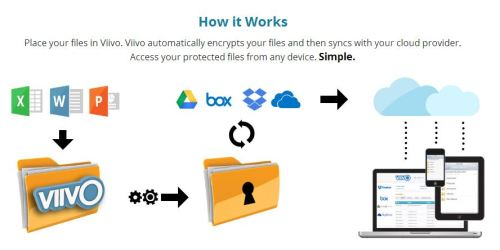 How Viivo Works