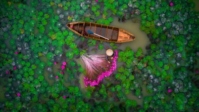 dronestagram waterlily