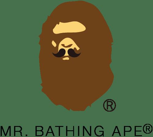 Mr. BATHING APE
