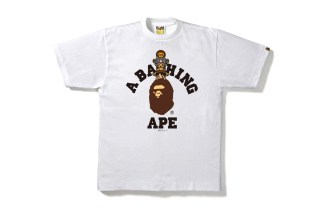bape-one-piece-capsule-3