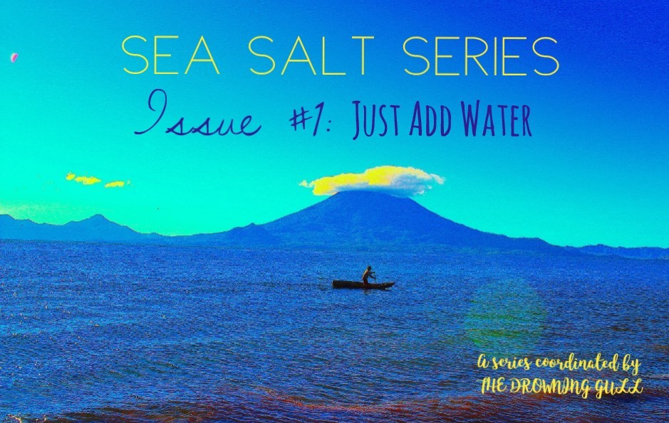 Sea Salt Series Issue #1: Just Add Water