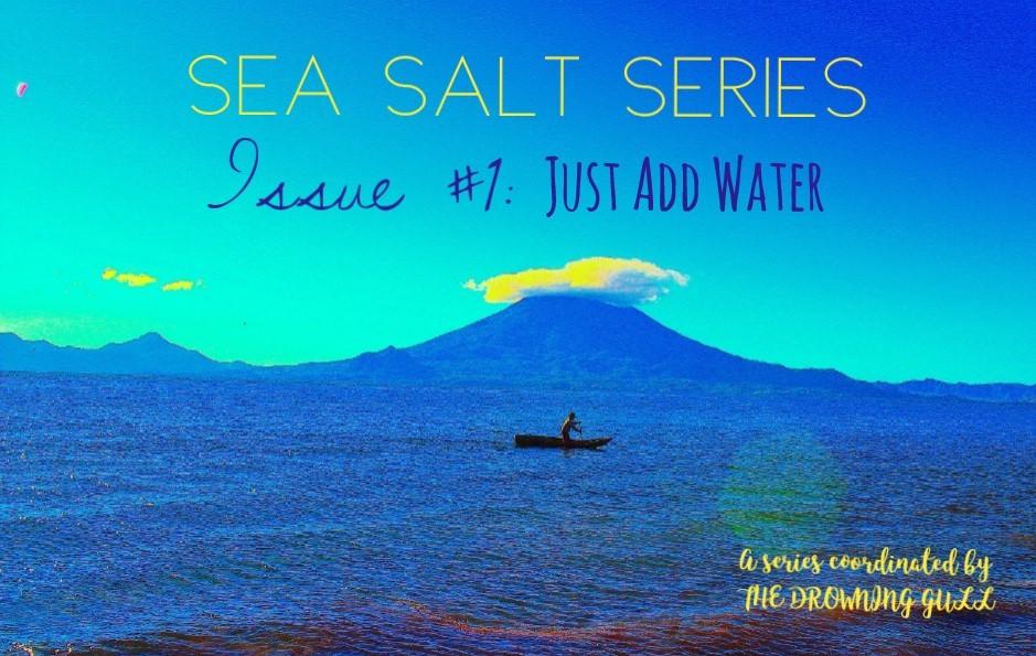 Sea Salt Series Issue #1: Just Add Water