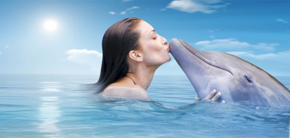 dolphin_kiss