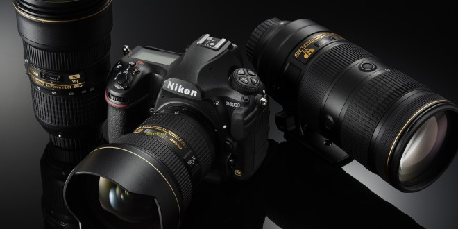 Nikon D8000 DSLR to be Announced in 2018-19