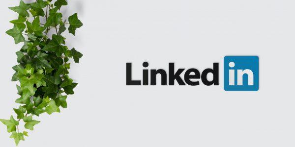 LinkedIn Profile Writer, Resume Coach, Resume Writer, CPRW