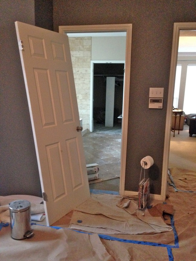 Our Bathroom Remodel - Episode 6: Officially in the WTF Stage