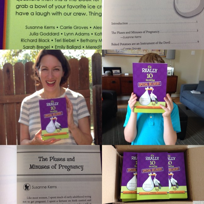 The Pluses & Minuses of Pregnancy from It's Really 10 Months - Special Delivery