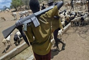 Image result for 12 feared dead in an ambush attack by herdsmen in Adamawa.