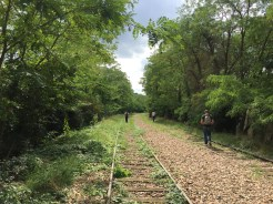 The tracks are largely overgrown today