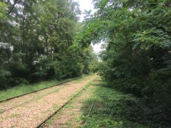 Not a soul in sight on the abandoned tracks.