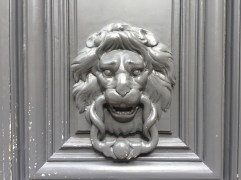 Another curly lion