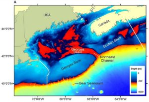 A Canada Deepwater Drilling spill would link to US Waters