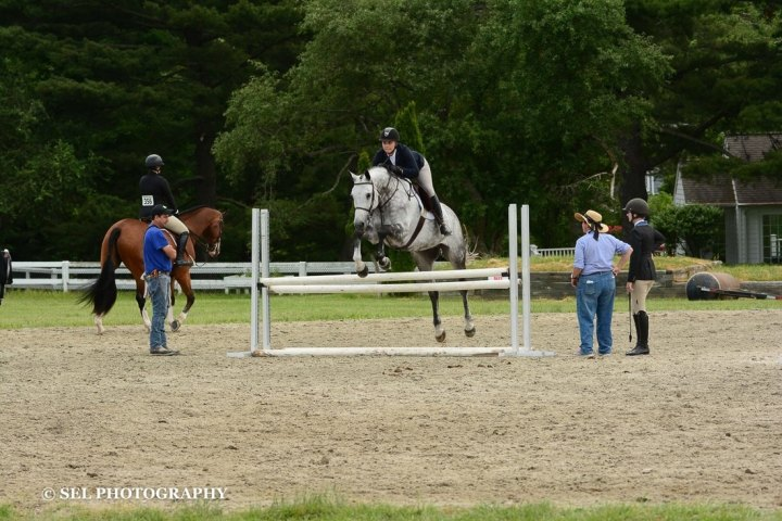Work/Horse Balance: Making the Decision to Make it Work