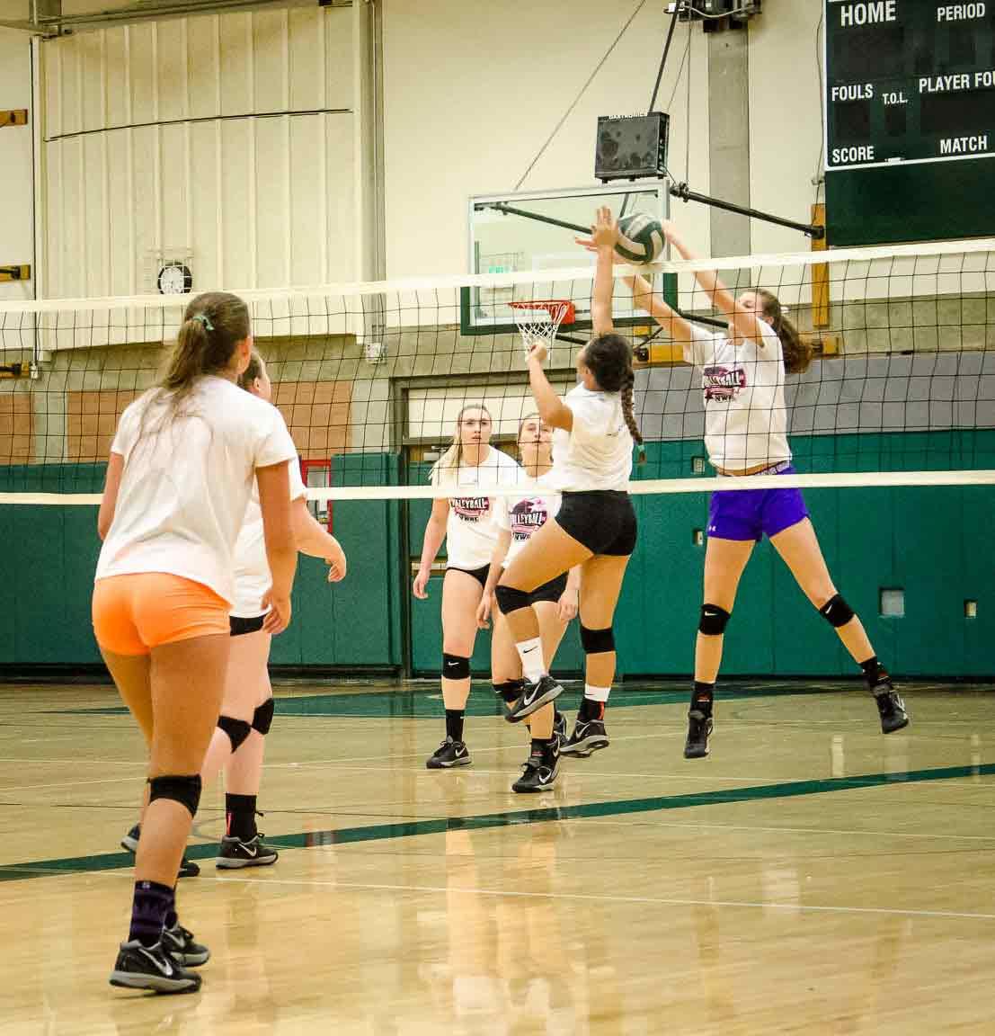 volleyball-mini