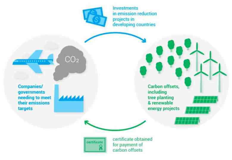 Infographic to show problems with carbon offset
