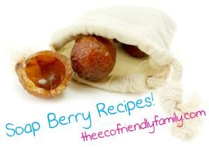 Soap Berry Recipes