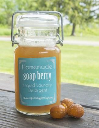 Soap Berry Liquid Detergent Recipe