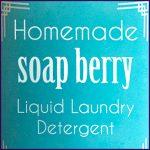 DIY_Liquid_Soap_Nuts_Detergent