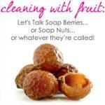 Soap_Berries