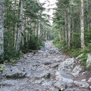 Trail - Photo by Ws47