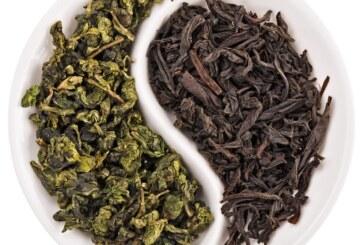 Green tea vs. Black tea: Which is better?