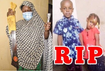 Fleeing Kano housewife who killed two children, arrested