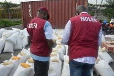 NDLEA intercepts 2412.39kg hard drugs in Oyo